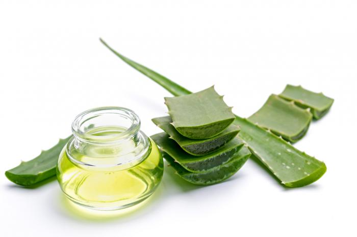 aloe vera - ZEVEN KRUIDEN EN SUPPLEMENTEN VOOR DIABETES TYPE 2
